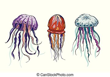 Jelly fish vector set. Sea animal vector collection. Marine ...