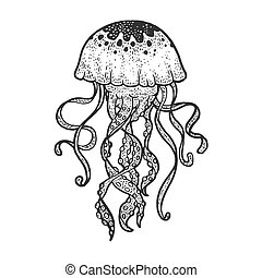 jellyfish sketch engraving vector illustration. T-shirt apparel print design. Scratch board imitation. Black and white hand drawn image.