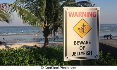 Jellyfish warning sign on the beach - Jellyfish Warning sign...