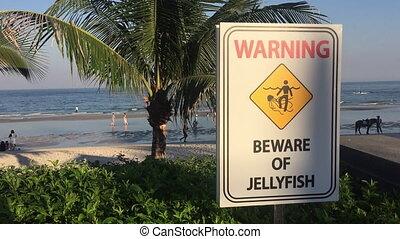 Jellyfish warning sign on the beach - Jellyfish Warning sign...