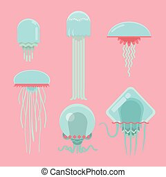 jellyfishes., rigolote, ensemble, dessin animé