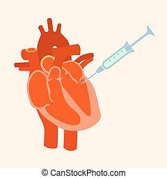 jeringuilla, corazón, humano