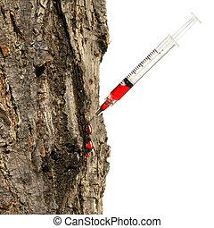 jeringuilla, insertado, blanco, tronco de árbol