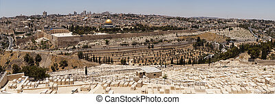 Jerusalem Panorama Viewpoint
