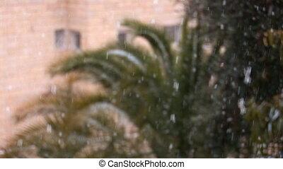 Jerusalem snow 2012 2 - snow in Jerusalem