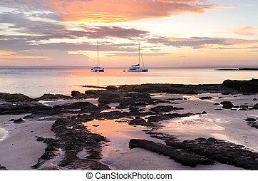 jervis, strand, catamarans, laurierboom, kool, luxe, sereniteit