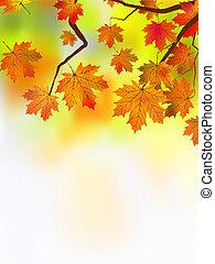 jesień, bardzo, liście, płytki, ognisko.