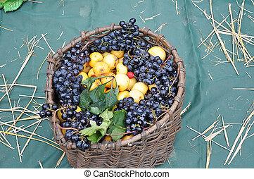 jesień, dary, od, natura