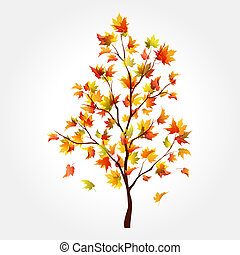 jesień, drzewo., klon