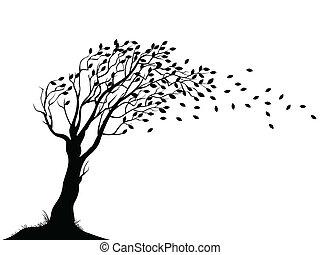 jesień, drzewo, sylwetka