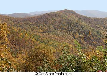 jesień, góry, daszek, appalachian