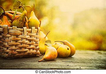 jesień, gruszki