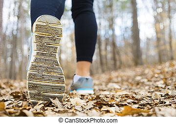 jesień, jogging, kobieta, las