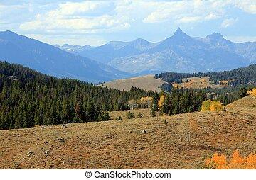 jesień, kolor, montana