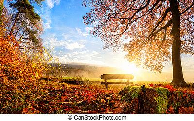 jesień, krajobraz, wspaniały
