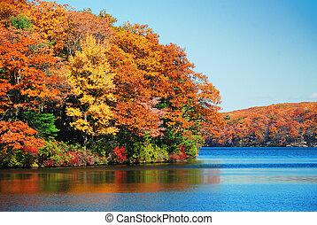 jesień, na, jezioro, liście