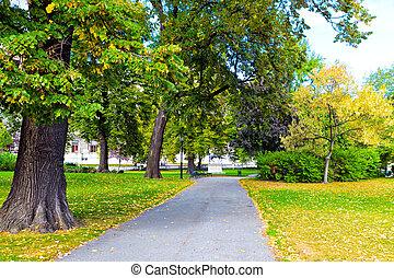 jesień, park, aleja