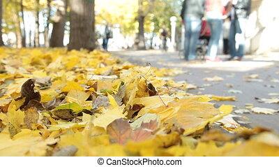 jesień, park, ludzie