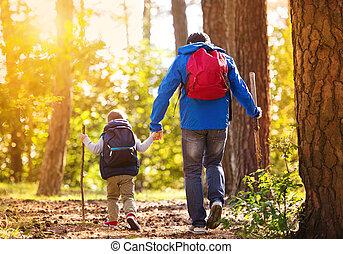 jesień, pieszy, ojciec, las, syn