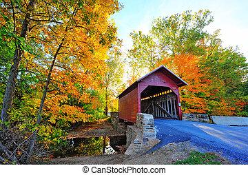 jesień, pokryty, maryland, most
