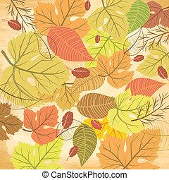 jesień, próbka, liść
