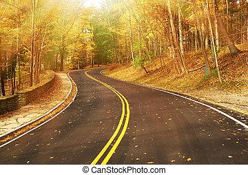 jesień, scena, droga, las