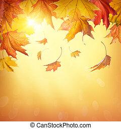 jesień, spadanie, liście