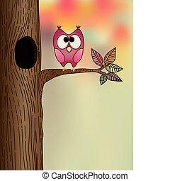 jesień, sprytny, drzewo, sowa