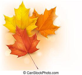 jesień, tło, z, liście
