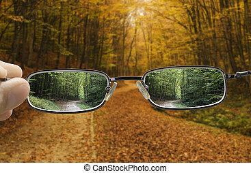 jesień, wiosna, tokarski, widzenie
