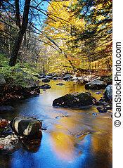 jesień, zatoczka, liście