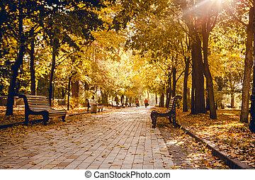 jesienny, pasaż