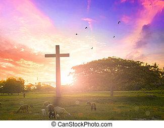 jesus cristo, misericórdia, em, crucifixos, ligado, montanha, pôr do sol, fundo, ele, convicção, para, adoração, filho deus