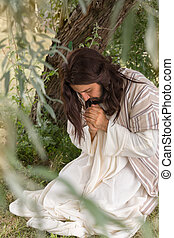 Jesus in agony praying in the garden of olives before his...
