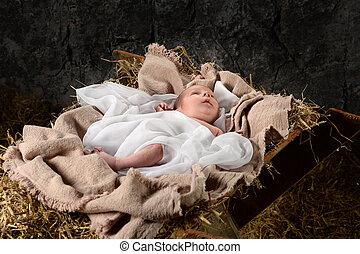 Jesus Resting on Manger