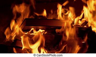 jeté, concept, brûler, -, livre, censure