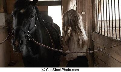 jets, chemise, girl, cheval, gants, selle, blanc
