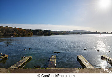 jetties, a, talkin, tarn, su, un, autunno, day.