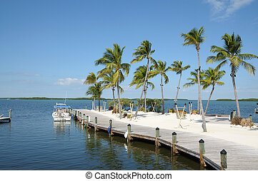 Jetty and Palm Trees on Florida Keys