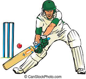 jeu, boule cricket, -, chauve-souris