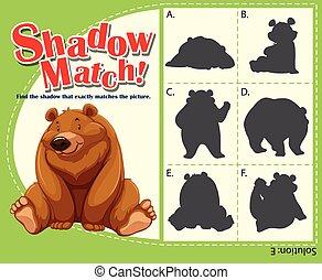 jeu, ombre, gabarit, ours, assorti