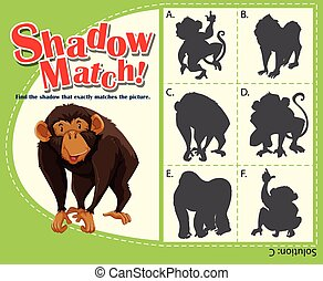 jeu, ombre, singe, gabarit, assorti