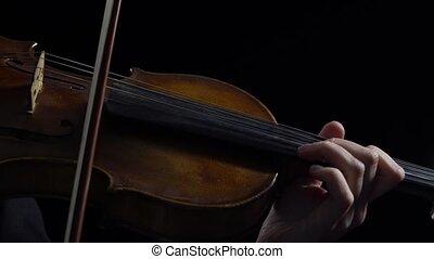 jeu, room., haut, sombre, arrière-plan., noir, violon, fin, instruments à cordes, femmes