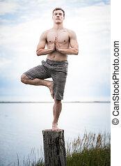 jeune adulte, faire, yoga, sur, a, souche, dans, nature