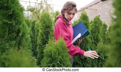 jeune, business, vente, développé, inspecte, seedlings,...