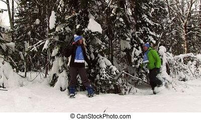 jeune couple, hiver, forêt