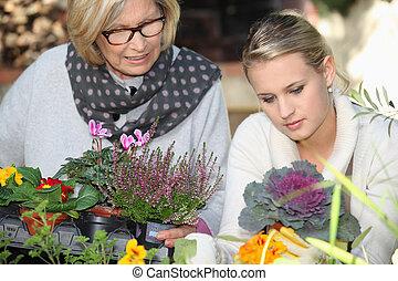 jeune femme, portion, personne agee, dame, dans jardin