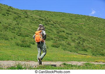 jeune femme, randonneur, randonnée, dans, prairie, montagne, piste