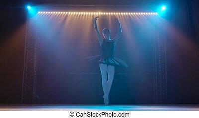 jeune, flexible, ballet., ballet, gracieux, coup, éléments, pointe, projecteurs, tutu, silhouette, sous, classique, danse, studio., shoes., obscurité, théâtral, ballerine, noir