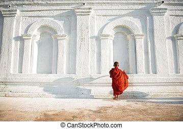 jeune, peu, bouddhiste, moines, asiatique